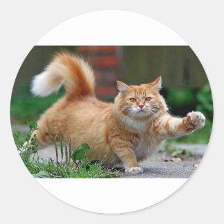 Gato anaranjado gordo grande pegatina redonda