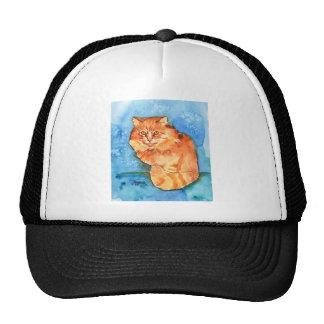Gato anaranjado gorros