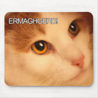 Gato anaranjado Mousepad de Ermahgerd Tapetes De Ratón