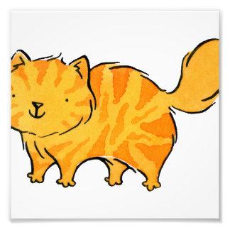 Gato anaranjado regordete del gatito cojinete