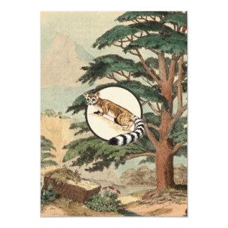 """Gato Anillo-Atado en el ejemplo del hábitat Invitación 5"""" X 7"""""""