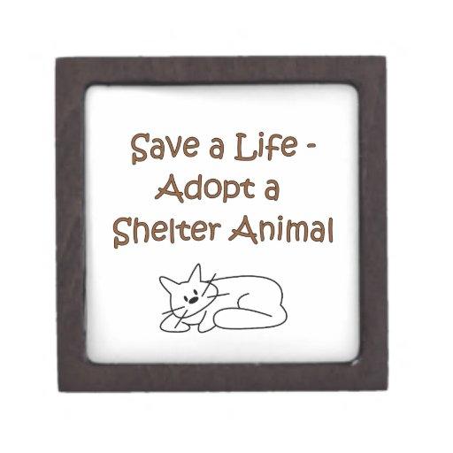 Gato animal del refugio del rescate/de la adopción caja de recuerdo de calidad