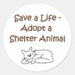 Gato animal del refugio del rescate/de la adopción pegatina redonda