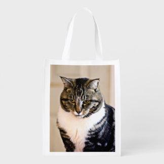 Gato asustadizo bolsa de la compra