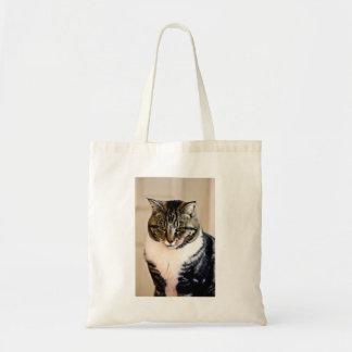 Gato asustadizo bolsa tela barata