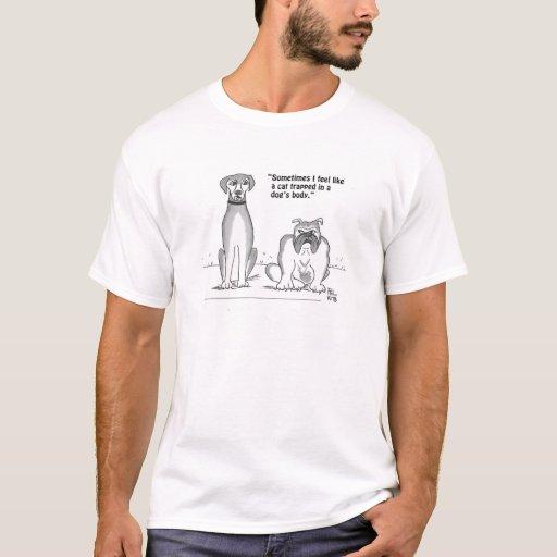 Gato atrapado en la camiseta del cuerpo de un