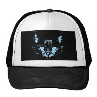 Gato azul del empollón gorras