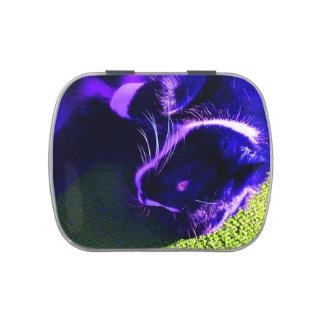 gato azul en imagen animal felina lateral del arte latas de caramelos
