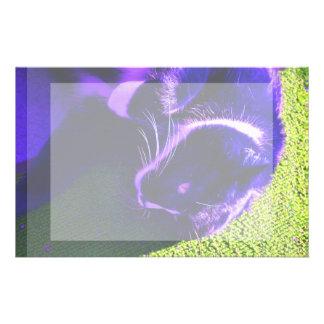 gato azul en imagen animal felina lateral del arte papeleria