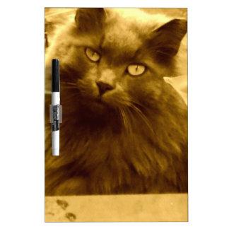 Gato azul ruso de pelo largo del vintage pizarra blanca