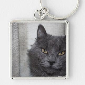 Gato azul ruso de pelo largo llavero cuadrado plateado