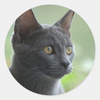 Gato azul ruso pegatina redonda
