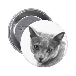 Gato azul ruso pins