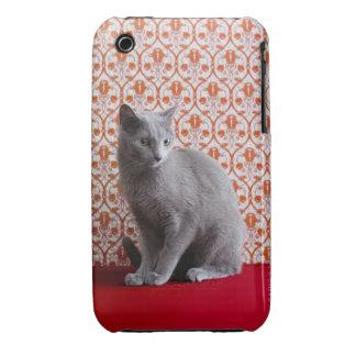 Gato (azul ruso) y fondo del papel pintado Case-Mate iPhone 3 fundas