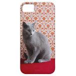 Gato (azul ruso) y fondo del papel pintado iPhone 5 Case-Mate protectores