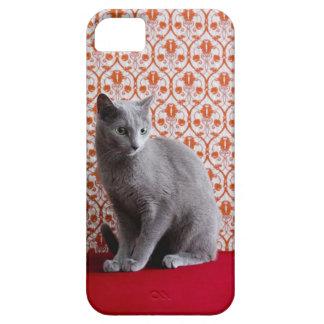 Gato (azul ruso) y fondo del papel pintado funda para iPhone 5 barely there