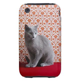 Gato (azul ruso) y fondo del papel pintado iPhone 3 tough protector