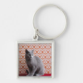 Gato azul ruso y fondo del papel pintado llaveros personalizados