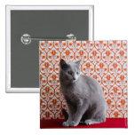 Gato (azul ruso) y fondo del papel pintado pins