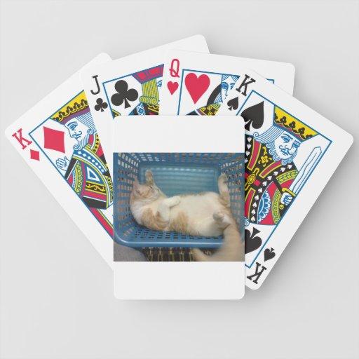 Gato Baraja Cartas De Poker