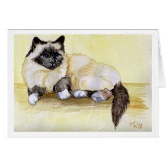 Gato birmano del punto del sello tarjeta pequeña