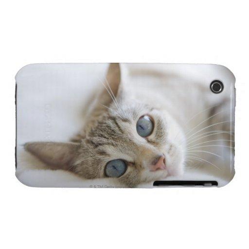 Gato blanco bonito con los ojos azules que ponen funda para iPhone 3 de Case-Mate