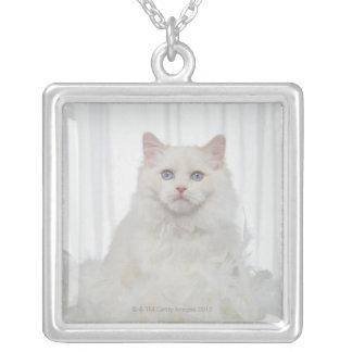 Gato blanco con las plumas colgante cuadrado