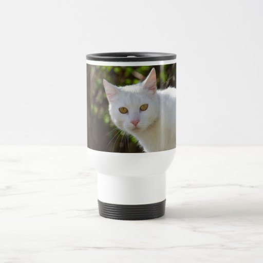 Gato blanco con los ojos amarillos taza térmica