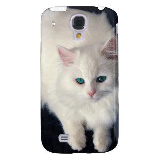 Gato blanco con los ojos de azules turquesas iPhon