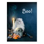 Gato blanco de Halloween Tarjetas Postales