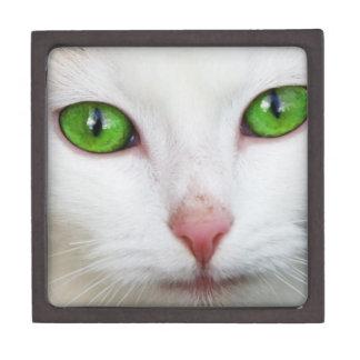 Gato blanco de ojos verdes cajas de recuerdo de calidad