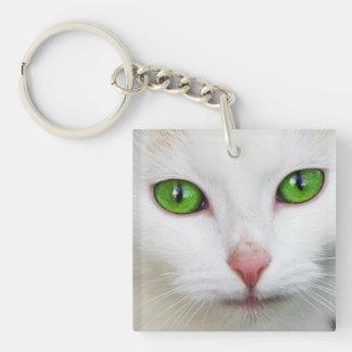 Gato blanco de ojos verdes llaveros