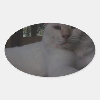 Gato blanco, de pelo largo hermoso pegatina ovalada