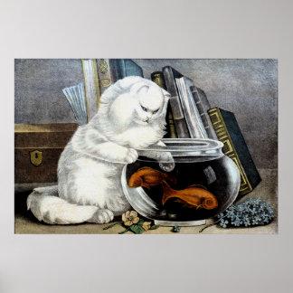 Gato blanco del vintage ido a pescar el poster del