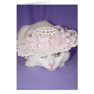 Gato blanco en capo tarjetón