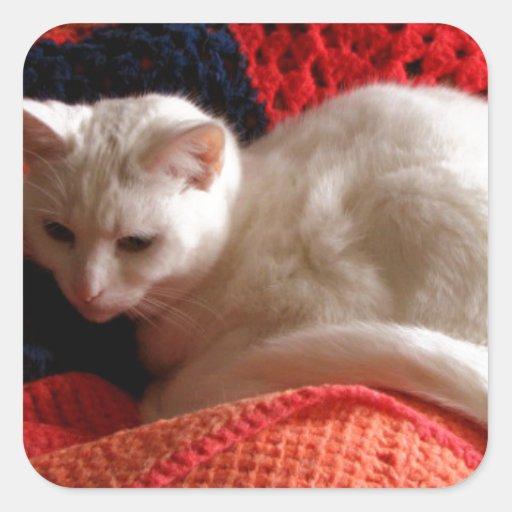 gato blanco en la manta roja del punto del pegatina cuadradas