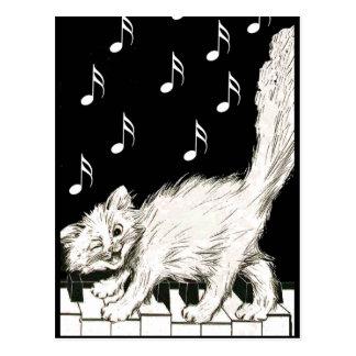 Gato blanco en llaves del piano tarjeta postal