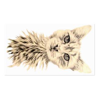 Gato blanco en tarjeta de visita