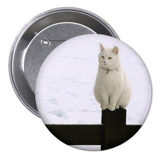 Gato blanco gordo en un botón negro de la cerca pin