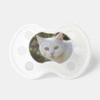Gato blanco hermoso chupete de bebe