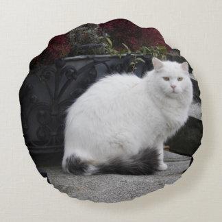 Gato blanco hermoso en un sepulcro cojín redondo