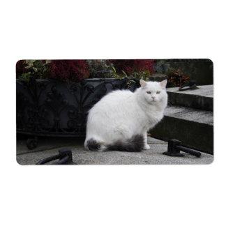 Gato blanco hermoso en un sepulcro etiqueta de envío