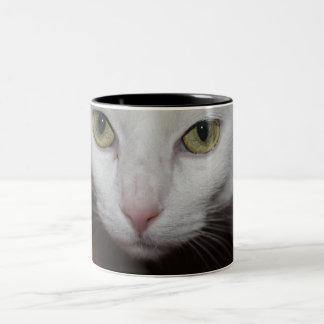 Gato blanco hermoso taza de dos tonos