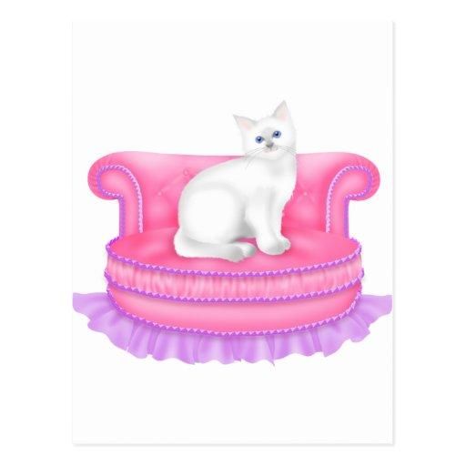 Gato blanco lindo del gatito del gatito tarjeta postal