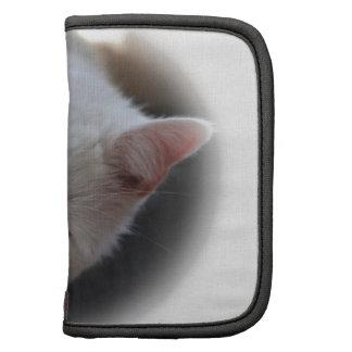 Gato blanco organizador