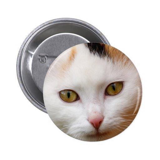 Gato blanco pin