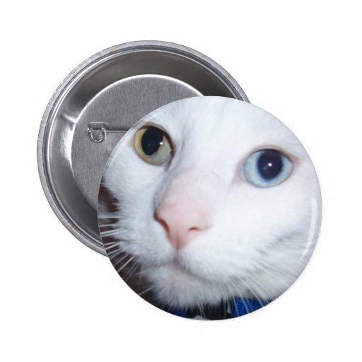 gato blanco pin redondo 5 cm