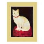 Gato blanco postal