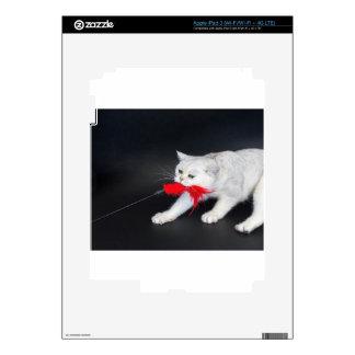 Gato blanco que juega tirando del juguete rojo iPad 3 skin