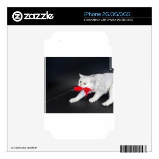 Gato blanco que juega tirando del juguete rojo iPhone 3G calcomanía
